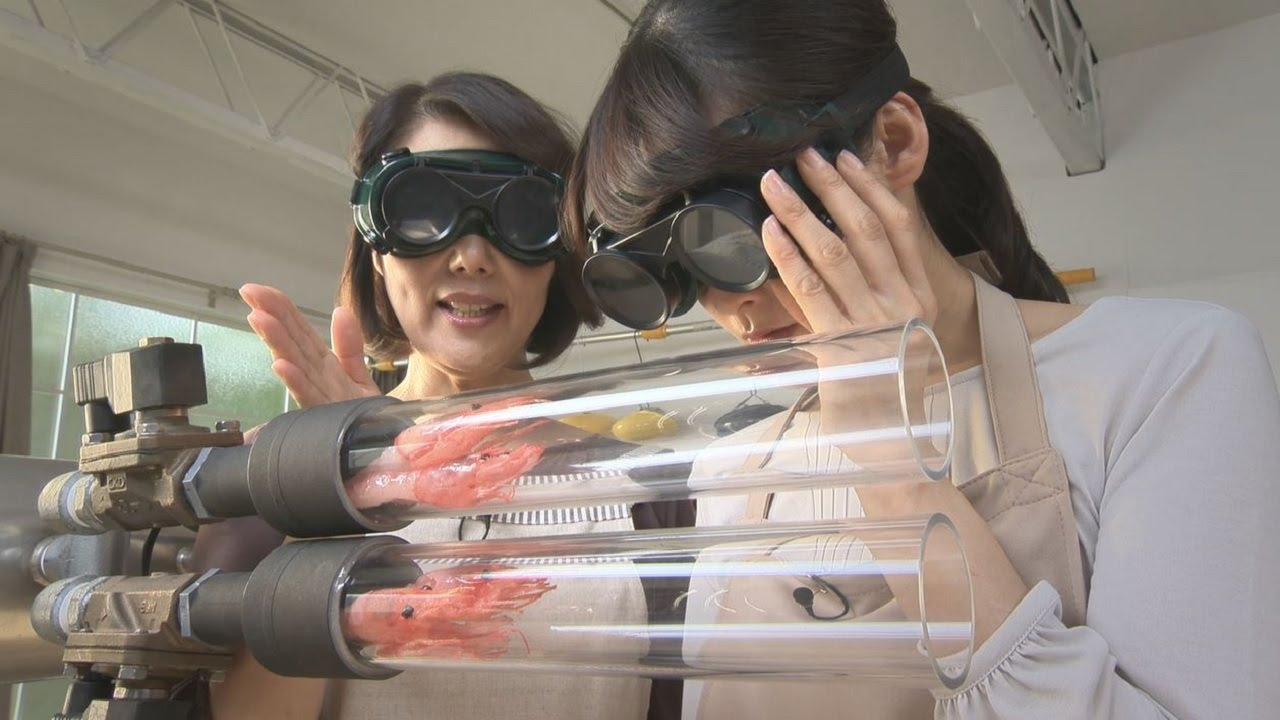 Japan's 'Three Seconds Cooking Shrimp Flying Cannon' Will Blow Your Mind