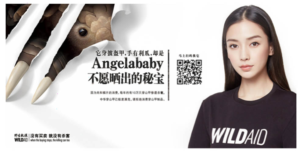 Angelbaby teams up with WildAid and Wunderman Shanghai to save Endangered Pangolins