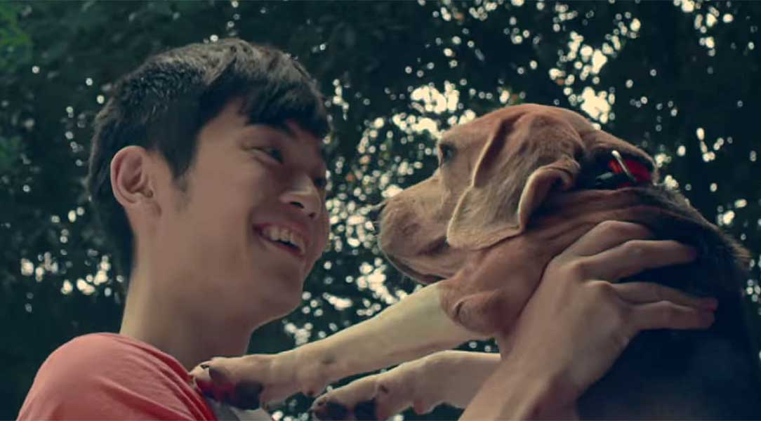 AirAsia Wishes a 'Pawsperous' Year of the Dog in Campaign Spot for Chinese New Year